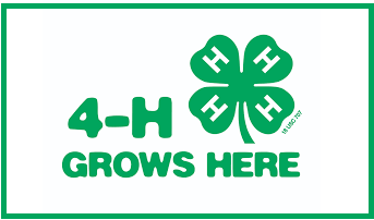 South Dakota 4H Competition