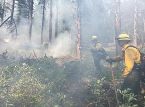 Crews work the lines of the Bulldog Fire Saturday.