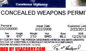 Concealed Carry-Veto