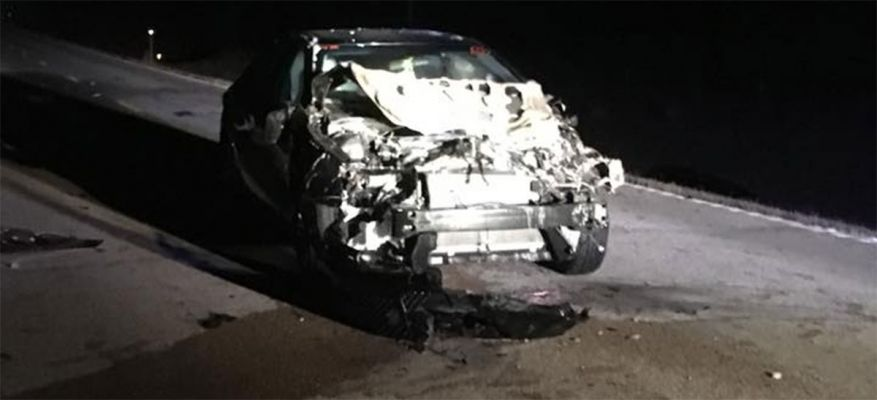 Car strikes cow in Harding County early Thursday