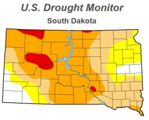 This week's drought monitor map for South Dakota.