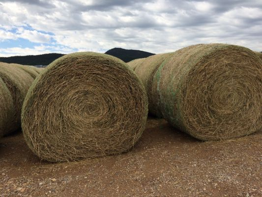 Drought Aid-Hay Help