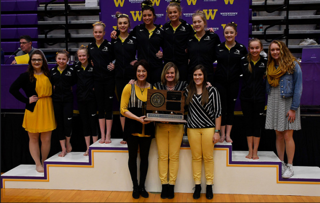 Mitchell wins State AA Gymnastics Title.