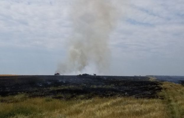 Fire crews knock down a 40 acre grass fire near New Underwood Thursday.
