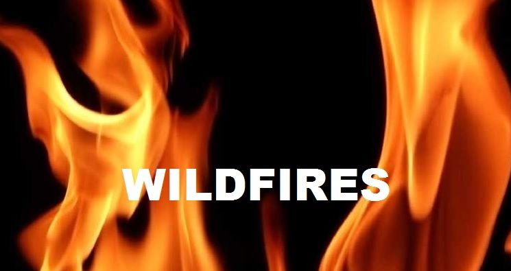 Area Wildfires