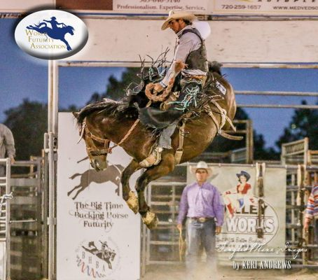 The Newell Bronc Futurity is a sanctioned event of the World Futurity Association. This is �Bad Cat